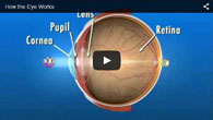 How the Eye Works - provided by ECVA Eye Care